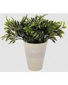 Grøn busk B