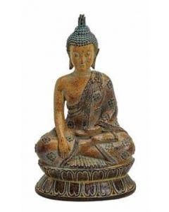 Buddha i antiklook