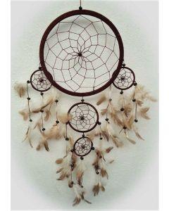 drømmefanger-rød-brune fjer
