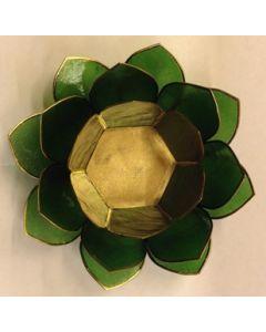 Lotus grøn