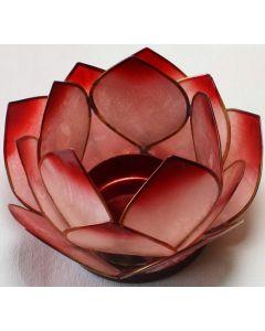 Lotus stage pink