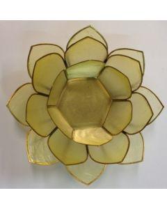 lotus bordeaux